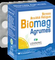 Lehning Biomag Comprimés à Croquer Agrumes B/90 à NAVENNE