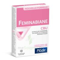 Pileje Feminabiane Cbu 30 Comprimés Bicouches à NAVENNE