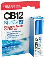 CB 12 Spray haleine fraîche 15ml à NAVENNE