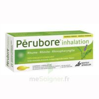 PERUBORE Caps inhalation par vapeur inhalation Plq/15 à NAVENNE