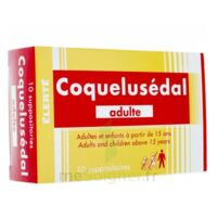 COQUELUSEDAL ADULTES, suppositoire à NAVENNE