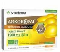 Arkoroyal Gelée royale bio 1500 mg Solution buvable 20 Ampoules/10ml à NAVENNE