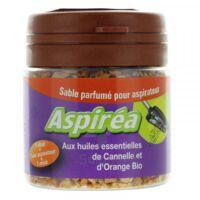 Aspiréa Grain pour aspirateur Cannelle Orange Huile essentielle Bio 60g à NAVENNE