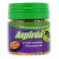 Aspiréa Grain pour aspirateur Eucalyptus Huile essentielle Bio 60g à NAVENNE