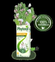 Phytoxil Toux Sans Sucre Sirop Adulte Enfant +2 Ans Fl/120ml à NAVENNE