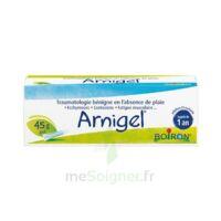 Boiron Arnigel Gel T(alumino-plastique)/45g à NAVENNE