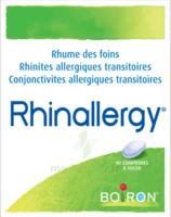 Boiron Rhinallergy Comprimés B/40 à NAVENNE