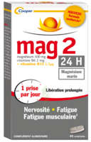 Mag 2 24h Comprimes B/45 à NAVENNE