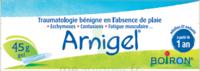 Boiron Arnigel Gel T/45g à NAVENNE