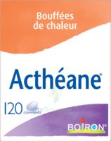 Boiron Acthéane Comprimés B/120 à NAVENNE